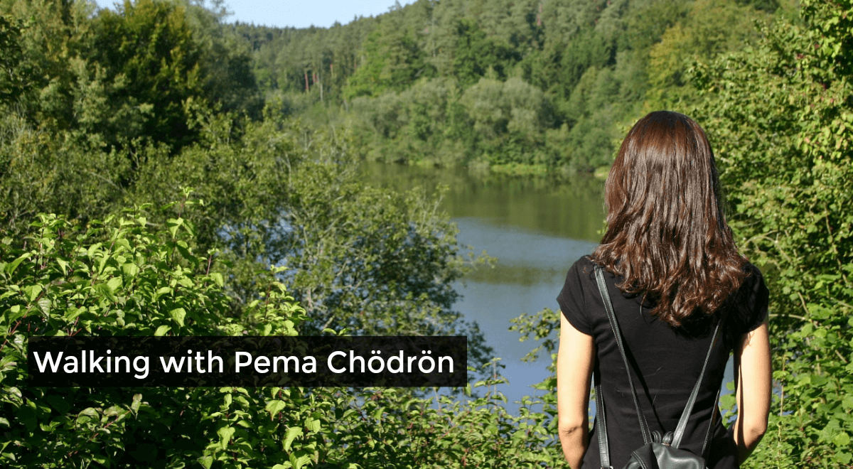 What Pema Chödrön Taught Me About Difficult Times, Pain, Fear, and Getting Unstuck
