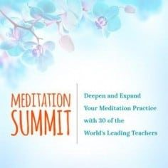 Meditation Summit, Featuring 30 of the World's Leading Meditation Teachers